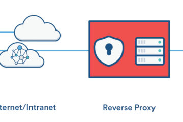 The Perfect Reverse Proxy (NGINX, SSL, WebUI Management